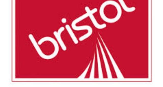 Bristol Paints Franchise Stores